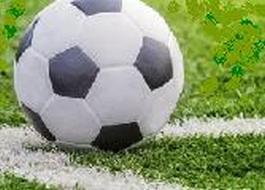 Stalowa Wola: Stalówka rozegra w sobotę mecz sparingowy z drużyną z Izraela